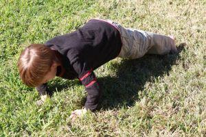 Addison pushup