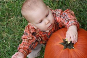 Asher pumpkin