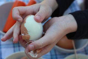 Egg peeling