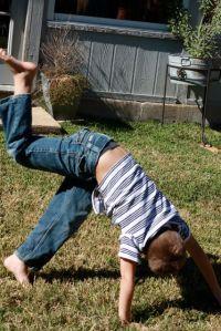 Jackson cartwheel
