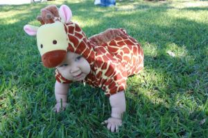 Asher giraffe