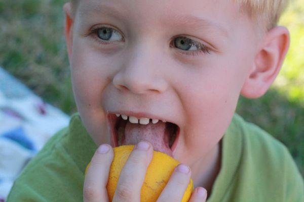 Preston lick orange